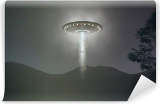 Fotomural Estándar UFO Abduction