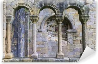 Vinyl-Fototapete Abbey Ruins