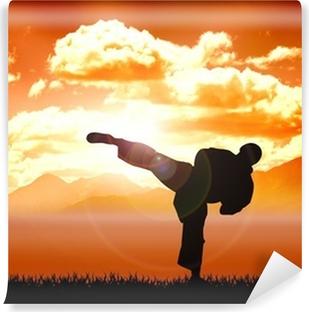 Vinyl-Fototapete Abbildungbeschreibung von Karate Training