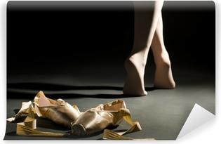 Vinyl-Fototapete Ballett schoes