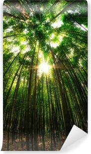 Vinyl-Fototapete Bambus-Wald in Damyang, Südkorea.