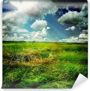 Vinyl-Fototapete Beautiful Nature Rural Landscape