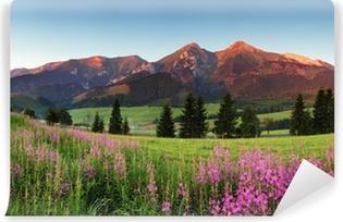 Vinyl-Fototapete Beauty Bergpanorama mit Blumen - Slowakei
