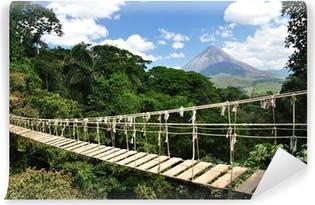 Vinyl-Fototapete Brücke im Dschungel