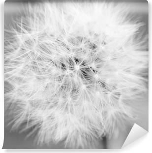 Vinyl-Fototapete Dandelion Mono