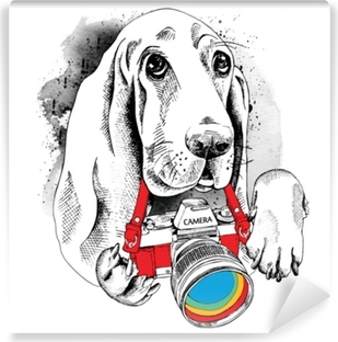 Vinyl-Fototapete Das Poster mit dem Bild des Hundes mit der Kamera. Vektor-Illustration