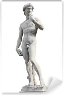 Vinyl-Fototapete David von Michelangelo