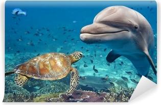 Vinyl-Fototapete Delphin und Schildkröte unter Wasser auf Riff