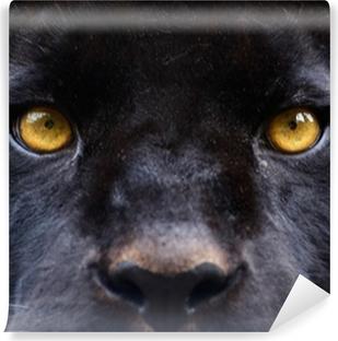 Vinyl-Fototapete Die Augen von einem schwarzen Panther