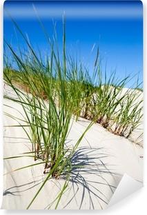 Vinyl-Fototapete Dünengrass in den Dünen von Norderney, Deutschland