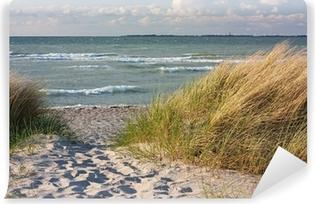 Vinyl-Fototapete Dünenlandschaft am Strand der Ostsee bei Heiligenhafen
