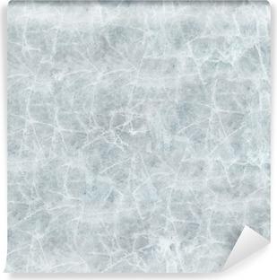 Vinyl-Fototapete Eisbedeckung nahtlose Textur.