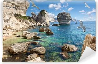 Vinyl-Fototapete Falaise in Bonifacio, Korsika