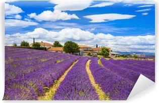Vinyl-Fototapete Feelds von blühenden Lavendel, Valensole, Provence, Frankreich, Europa