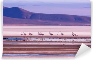 Vinyl-Fototapete Flamingo