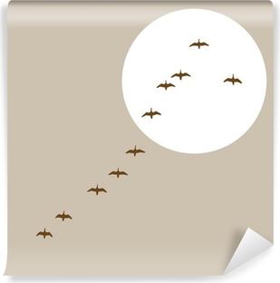 Vinyl-Fototapete Fliegende Enten Silhouette auf Solar-Hintergrund