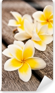 Vinyl-Fototapete Frangipani-Blüten, Holz Hintergrund