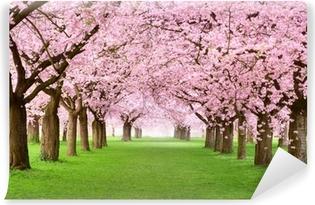 Vinyl-Fototapete Gartenanlage in voller Blütenpracht