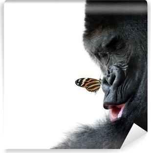 Vinyl-Fototapete Gorilla und Schmetterling Tier Freundschaft