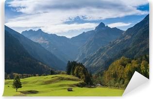 Vinyl-Fototapete Grüne Wiese im Allgäu mit Gipfel von einem Berg