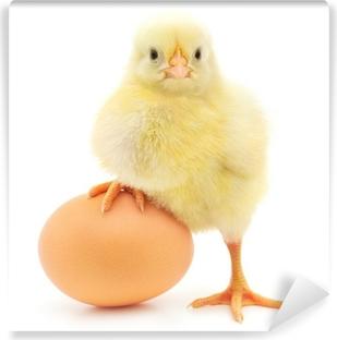 Vinyl-Fototapete Huhn und Ei