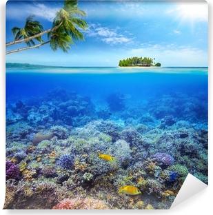 Fototapeten Unterwasserwelt Seite 2 Pixers 174 Wir