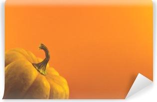 Vinyl-Fototapete Kürbis auf orange Hintergrund