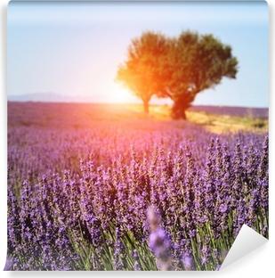 Vinyl-Fototapete Lavendelfeld in der Provence, Frankreich