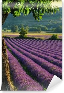 Vinyl-Fototapete Lavender 4