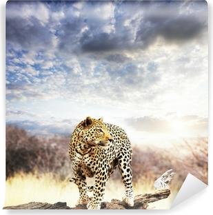 Vinyl-Fototapete Leopard