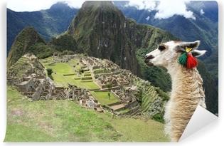 Vinyl-Fototapete Llama at Lost City of Machu Picchu - Peru