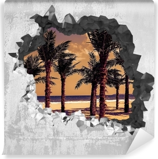 Vinyl-Fototapete Loch in der Wand - Palma