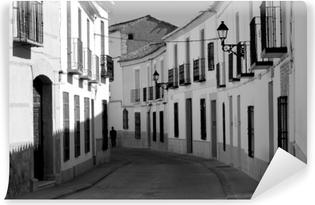 Vinyl-Fototapete Mancha - Spagna