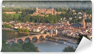 Vinyl-Fototapete Panorama Heidelberg