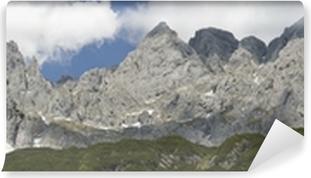 Vinyl-Fototapete Panorama vom Wilden Kaiser