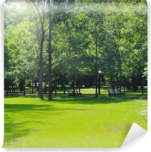 Vinyl-Fototapete Park
