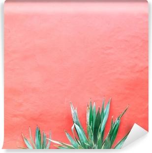 Vinyl-Fototapete Pflanzen auf rosa Konzept. Aloe auf rosa Hintergrundwand. Minimal Art