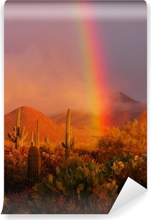 Vinyl-Fototapete Regenbogen Sonnenuntergang am Saguaro National Park, Arizona, USA