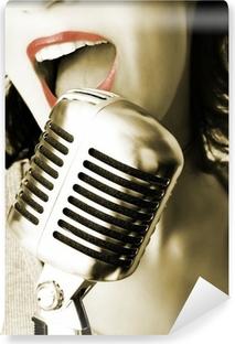 Vinyl-Fototapete Retro singer