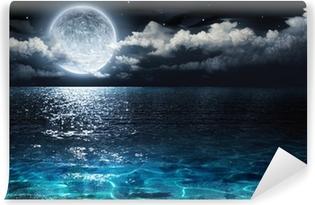 Vinyl-Fototapete Romantisch und landschaftlich Panorama mit Vollmond auf dem Meer bis in die Nacht