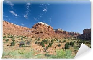 Vinyl-Fototapete Sandstein Mesa Canyon Landschaft Ghost Ranch Abiquiu New Mexico