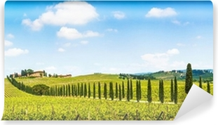 Vinyl-Fototapete Schöne Landschaft mit Weinberg, Chianti, Toskana, Italien