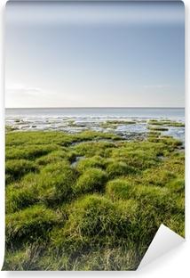 Vinyl-Fototapete Seegras am Ufer der Nordsee - Duhnen, Deutschland