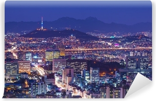 Vinyl-Fototapete Seoul Skyline