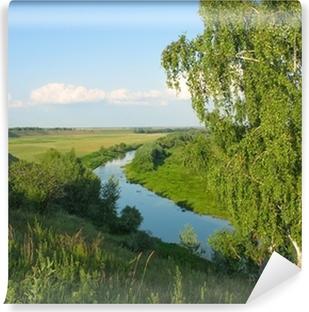 Vinyl-Fototapete Sommer-Landschaft mit einer Birke und kleinen Fluss
