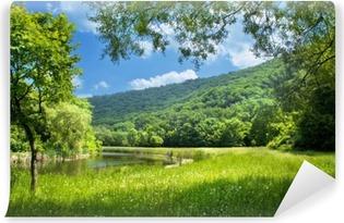 Vinyl-Fototapete Sommer Landschaft mit Fluss und blauer Himmel