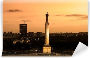 Vinyl-Fototapete Statue von Victor, Belgrad, Serbien.