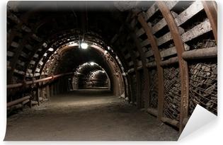 Vinyl-Fototapete Verstärkte Tunnel in Kohlebergwerk