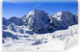 Vinyl-Fototapete Winter in den Bergen-schneebedeckten Gipfeln der Alpen