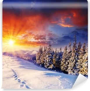 Vinyl-Fototapete Winterlicher